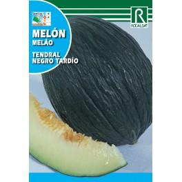 Semilla melón tendral negro tardio