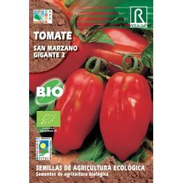 Semilla tomate san  (ecológica) marzano gigante 2