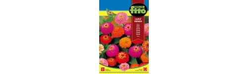 Ornamentales y plantas de flor
